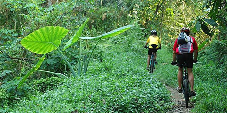 biker jungle